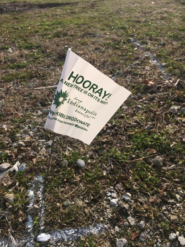 A sign shows where a tree will be planted at Eleanor Skillen School 34